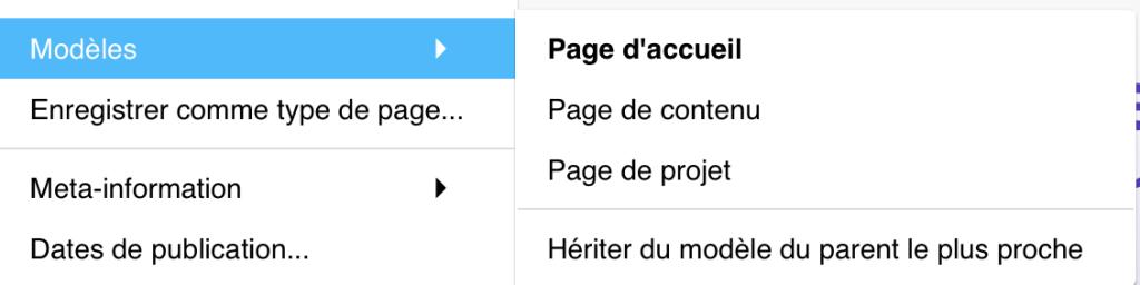 Menu page option modèle